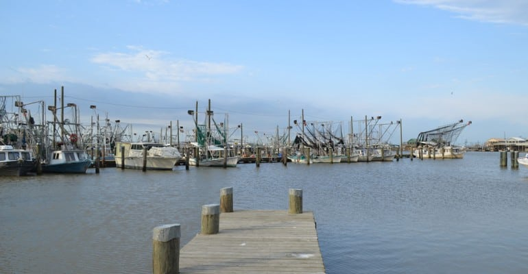 Ldwf expanded licensing services in lake charles for Fishing license in louisiana