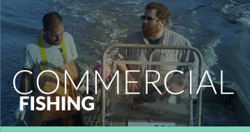 thumbnail for commercial fishing
