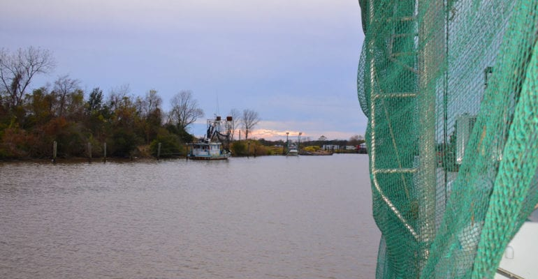 part of shrimp net and boat with bayou in background