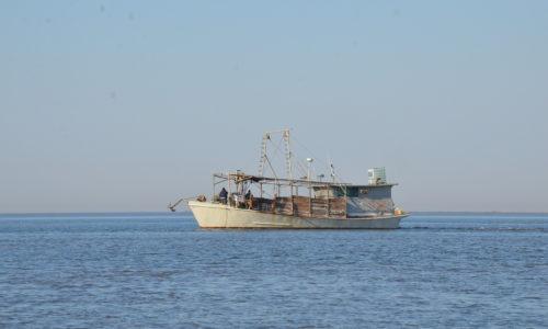 oyster boat in Gulf